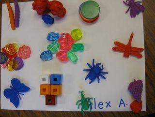 Kindergarten-sorting-2