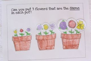 Flower-Problem