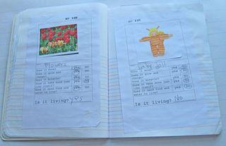 Kindergarten-Science-Journa