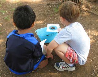 Kindergarten-soil-lesson6