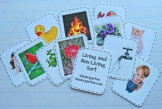 Living_Non-living-Flashcard
