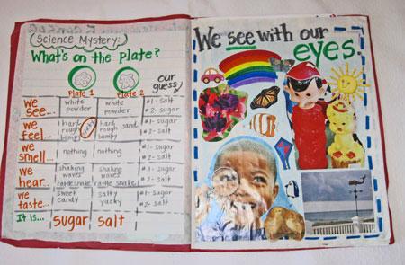 Our Big Five Senses Book Kindergarten Kindergarten