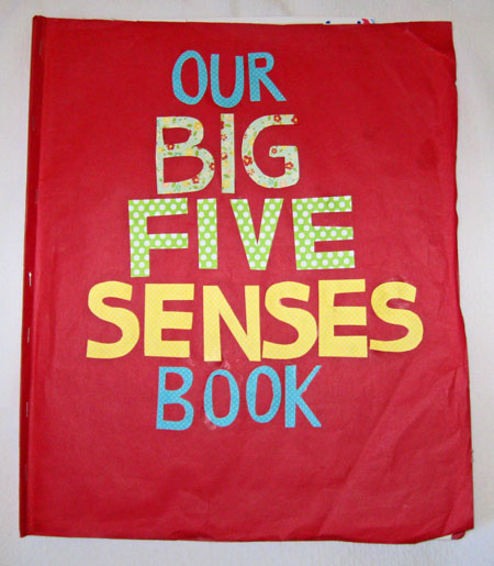 Five-Senses-Book-Cover