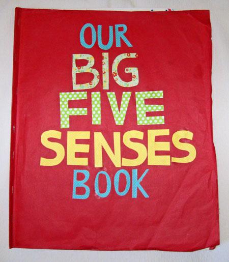 Five-Senses-Book-Cover
