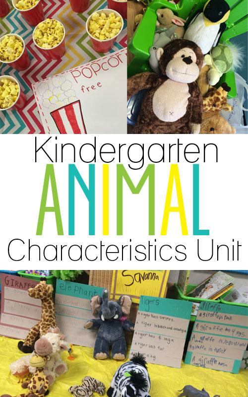 Kindergarten Animal Lesson
