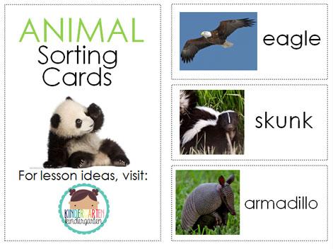 Animal-Sorting-Cards