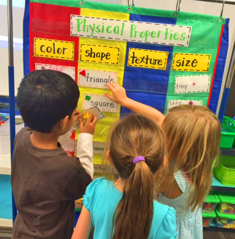 Kindergarten-Science-Word-W